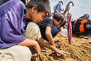 13 MAY 2013 - BANGKOK, THAILAND:   Children sift through the ploughed sand looking for blessed rice seeds at the Royal Ploughing Ceremony. After the ceremony, thousands of Thais, mostly family formers, rush onto the ploughed ground to gather up the blessed rice seeds sown by the Brahmin priests. The Royal Plowing Ceremony is held Thailand to mark the traditional beginning of the rice-growing season. The date is usually in May, but is determined by court astrologers and varies year to year. During the ceremony, two sacred oxen are hitched to a wooden plough and plough a small field on Sanam Luang (across from the Grand Palace), while rice seed is sown by court Brahmins. After the ploughing, the oxen are offered plates of food, including rice, corn, green beans, sesame, fresh-cut grass, water and rice whisky. Depending on what the oxen eat, court astrologers and Brahmins make a prediction on whether the coming growing season will be bountiful or not. The ceremony is rooted in Brahman belief, and is held to ensure a good harvest. A similar ceremony is held in Cambodia.  PHOTO BY JACK KURTZ