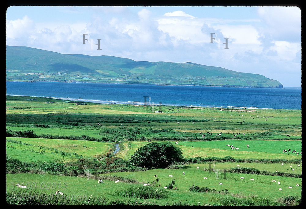 View of pastures, Brandon Bay and Brandon Point on the north coast of the Dingle Peninsula. Ireland