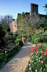 Looking along a path towards the house at Pashley Manor with Tulip 'Pink Diamond'