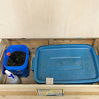 Vermicompost system in a wooden bin.