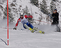 alpine, skiing, racing, athlete, winter, snow, race, ski, mountain