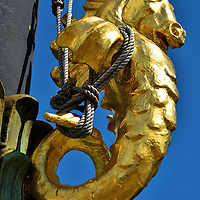 Mythological Creature Flagpole Tie in Gothenburg, Sweden <br /> This gilded mythological creature acts as a flagpole tie at Gustaf Adolf Square. It is extremely curious. Its horse&rsquo;s head has as single horn like a unicorn but then it also has wings like an alicorn.  Its slender torso has scales so perhaps it is a sea-horse or hippocampus.  Or maybe it is a Capricorn with the head of a mountain goat and a fish body. Another possibility is that the craftsman fabricated a complicated figure to serve a simple function.
