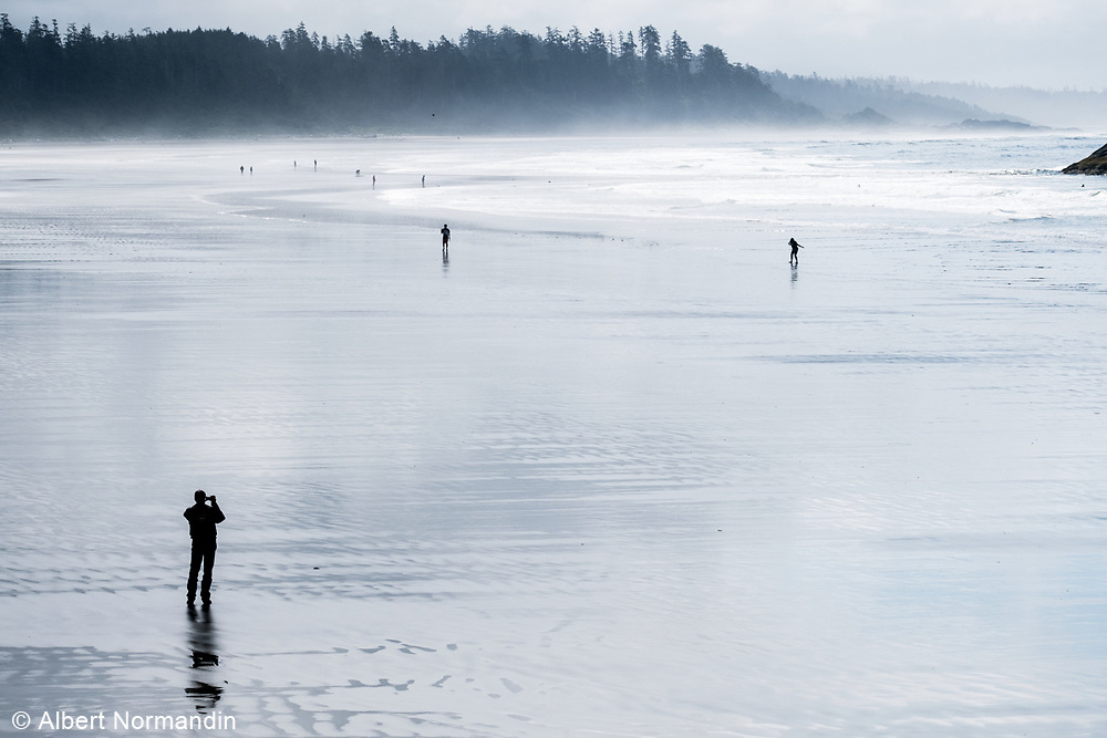 Long Beach shores, Tofino, BC