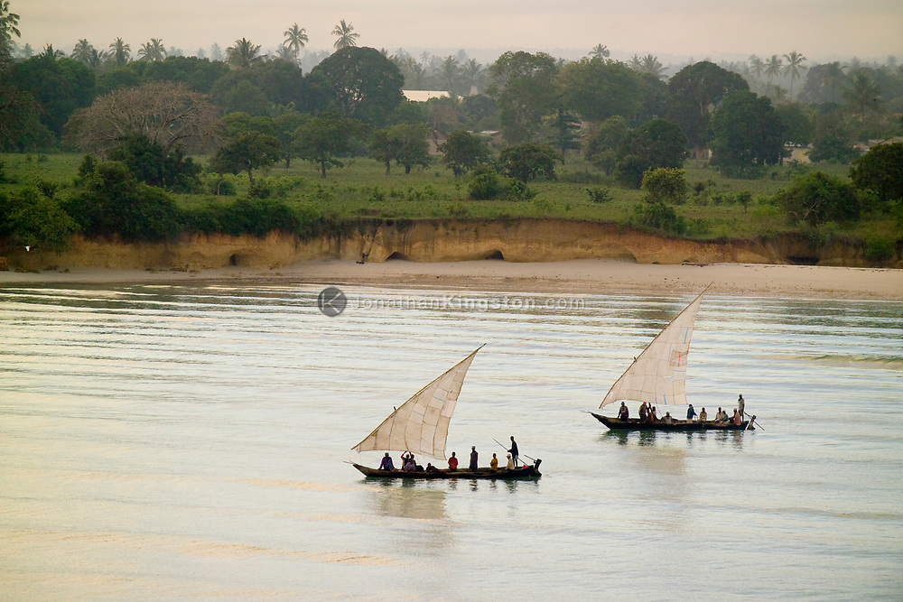Dhow's, traditional arab sailing vessel's with lateen sails, fish the waters near Dar es Salaam, Tanzania.