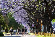 - Avenida Figueroa Alcorta