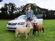 Skoda Farm release