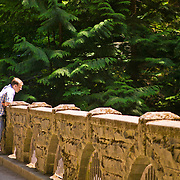 Stone Bridge over Whatcom Creek at Whatcom Falls Park, Bellingham, Washington