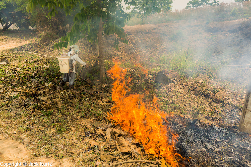 "23 APRIL 2014 - CHIANG SAEN, CHIANG RAI, THAILAND: A Thai farmer watches a fire she set on her land burn out. Many farmers in Thailand and neighboring Laos still practice ""slash and burn"" agriculture. The Thai government is trying to stop the burning but farmers are reluctant to give up burning. Chiang Rai province in northern Thailand is facing a drought this year. The 2014 drought has been brought on by lower than normal dry season rains. At the same time, closing dams in Yunnan province of China has caused the level of the Mekong River to drop suddenly exposing rocks and sandbars in the normally navigable Mekong River. Changes in the Mekong's levels means commercial shipping can't progress past Chiang Saen. Dozens of ships are tied up in the port area along the city's waterfront.               PHOTO BY JACK KURTZ"