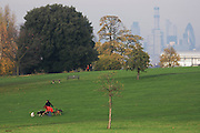 City of London skyline and dog walkers in the higher ground of Brockwell Park, Herne Hill.