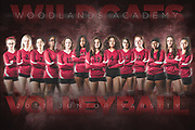 Woodlands Academy High School, Lake Forest, IL 2017 Volleyball Team Poster Photography by Chicago Sports Photographer Chris W. Pestel