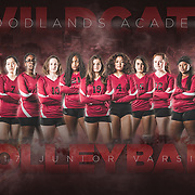 Team Poster - Volleyball (JV)