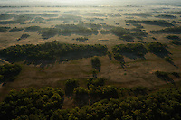 Aerials over the Danube delta, Letea forest, Danube delta rewilding area, Romania