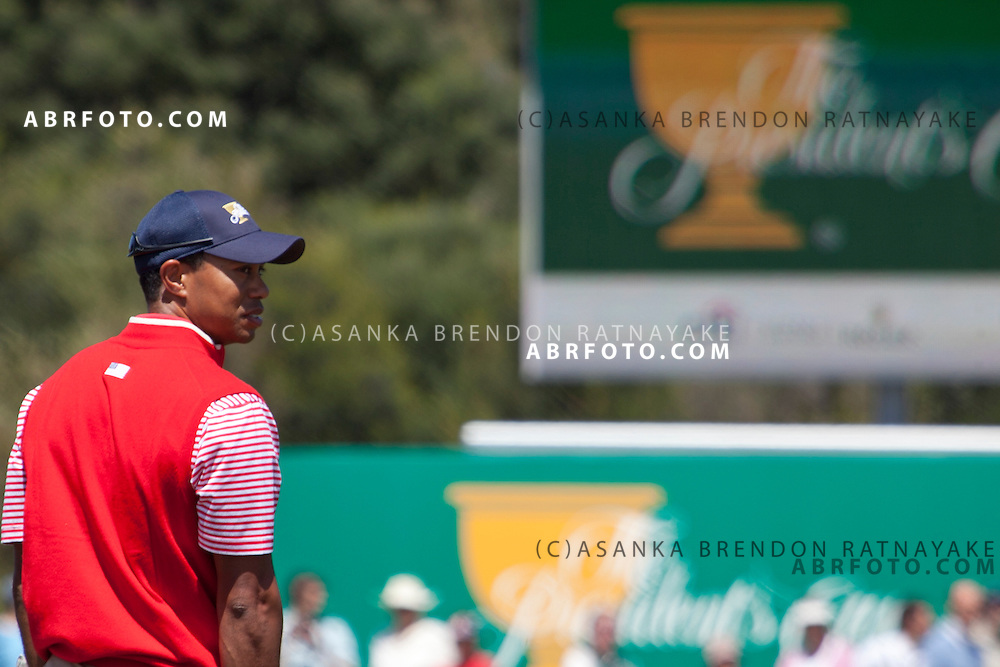 16 November 2011 : Tiger Woods (USA) during the 2nd & final day of practice at the Presidents Cup at the Royal Melbourne Golf Club in Melbourne, Australia. .