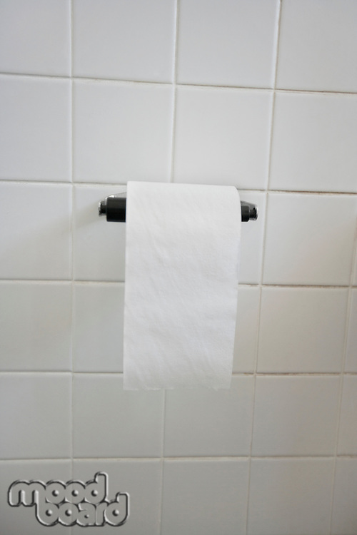 Close-up view of toilet paper in bathroom