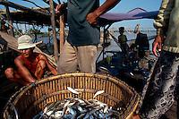 Fisheries along the Tonle Sap river