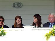 BLACK BEARS V DUBAI.QUEENS CUP GUARDS POLO CLUB SMITHS LAWN WINDSOR.12.6.05.PIX STEVE BUTLER