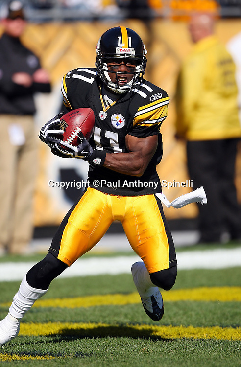 Pittsburgh Steelers kick returner Stefan Logan (11) fields a kickoff during the NFL football game against the Minnesota Vikings, October 25, 2009 in Pittsburgh, Pennsylvania. The Steelers won the game 27-17. (©Paul Anthony Spinelli)