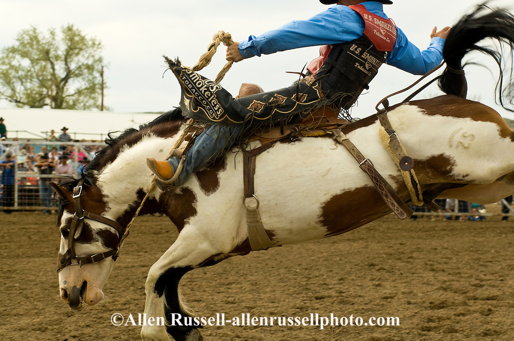 Jesse Bail, saddle bronc rider, Miles City Bucking Horse Sale, Montana