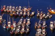 Fishing boats in Beruwela  harbour.