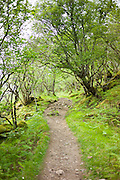 Empty pathway part of a country walk nature trail at Inverkirkaig in the Highlands of Western Scotland