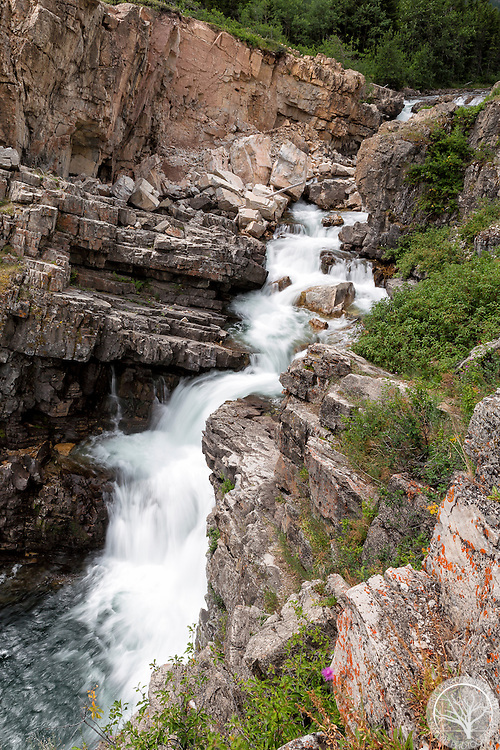 Swiftcurrent Falls, in the central section of Many Glaciers. Glacier National Park, Montana.