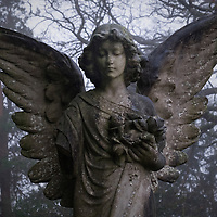 Stone angel in graveyard