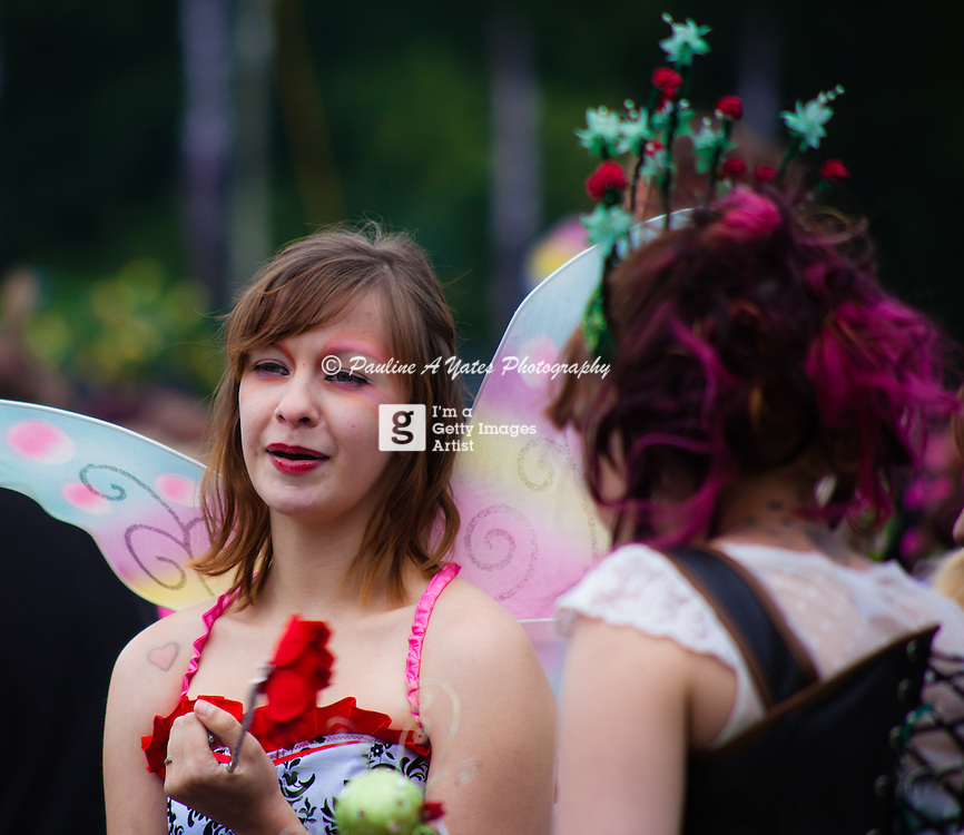 A young woman dressed as a fairy at Strawberry Fair's world record attempt to have as many fairies in one place at one time.