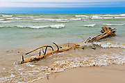Driftwood and waves on shore of Lake Huron<br /> Pinery Provincial Park<br /> Ontario<br /> Canada