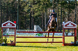 March 22, 2019 - Raeford, North Carolina, US - March 22, 2019 - Raeford, N.C., USA - DOUG PAYNE of the United States riding STAR WITNESS competes in the CCI3-S show jumping division at the sixth annual Cloud 11-Gavilan North LLC Carolina International CCI and Horse Trial, at Carolina Horse Park. The Carolina International CCI and Horse Trial is one of North AmericaÃ•s premier eventing competitions for national and international eventing combinations, hosting International competition at the CCI2*-S through CCI4*-S levels and National levels of Training through Advanced. (Credit Image: © Timothy L. Hale/ZUMA Wire)
