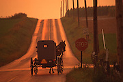 Amish horse and buggy on rural Lancaster road at sunset, Lancaster Co., PA