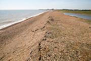 Shingle beach Coastal landscape North Sea coast, Bawdsey, Suffolk, England, UK