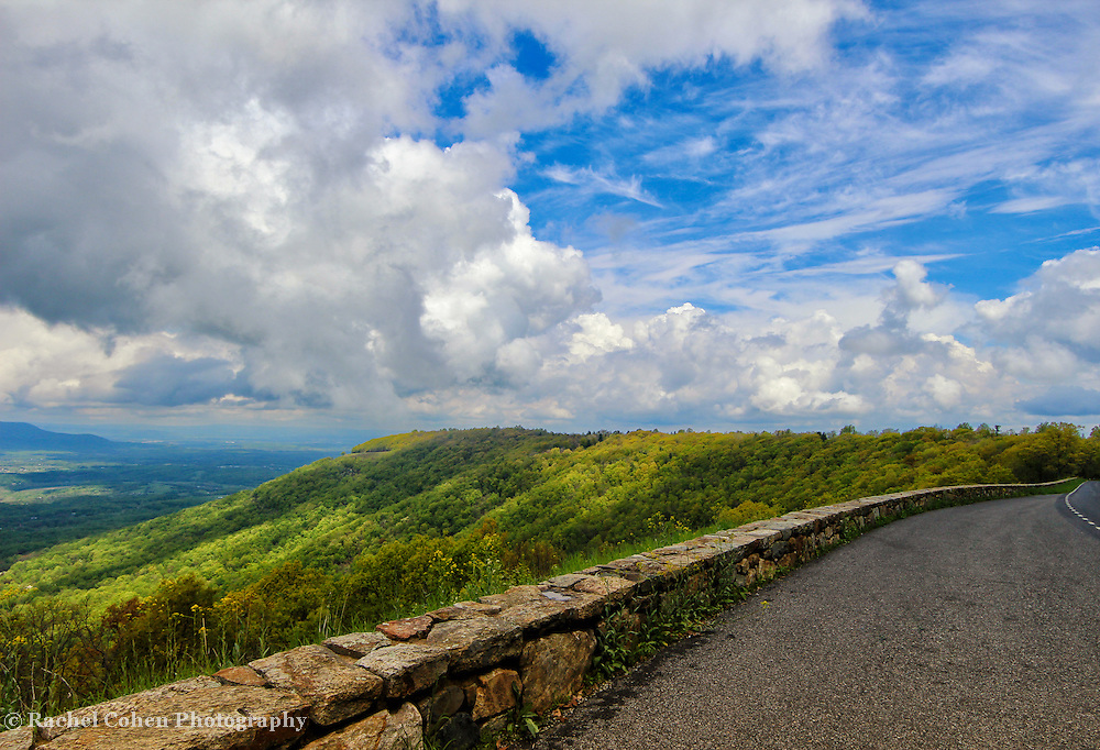 &quot;Generous Vista&quot;<br />