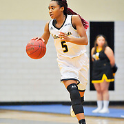 AIC Women's Basketball vs New Haven