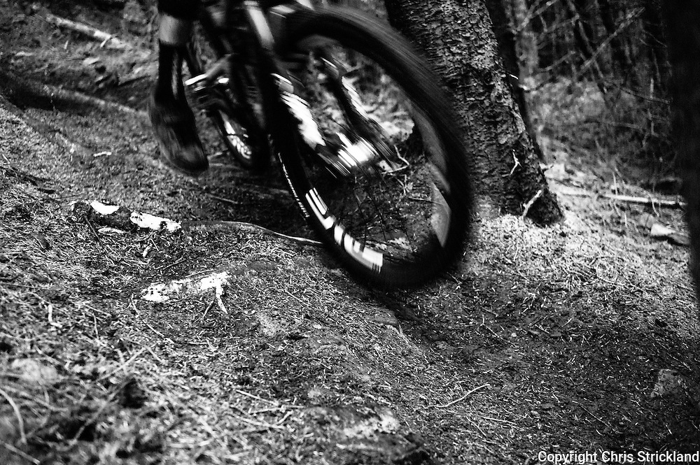 Innerleithen, Scottish Borders, UK, 24th May 2014. Riders tackled a steep course downhill enduro course during the seeding runs at the UK Gravity Enduro. Tweedlove is the fastest growing cycling festival in the UK and takes in some the finest routes in Europe.