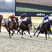 Lingfield 4th February