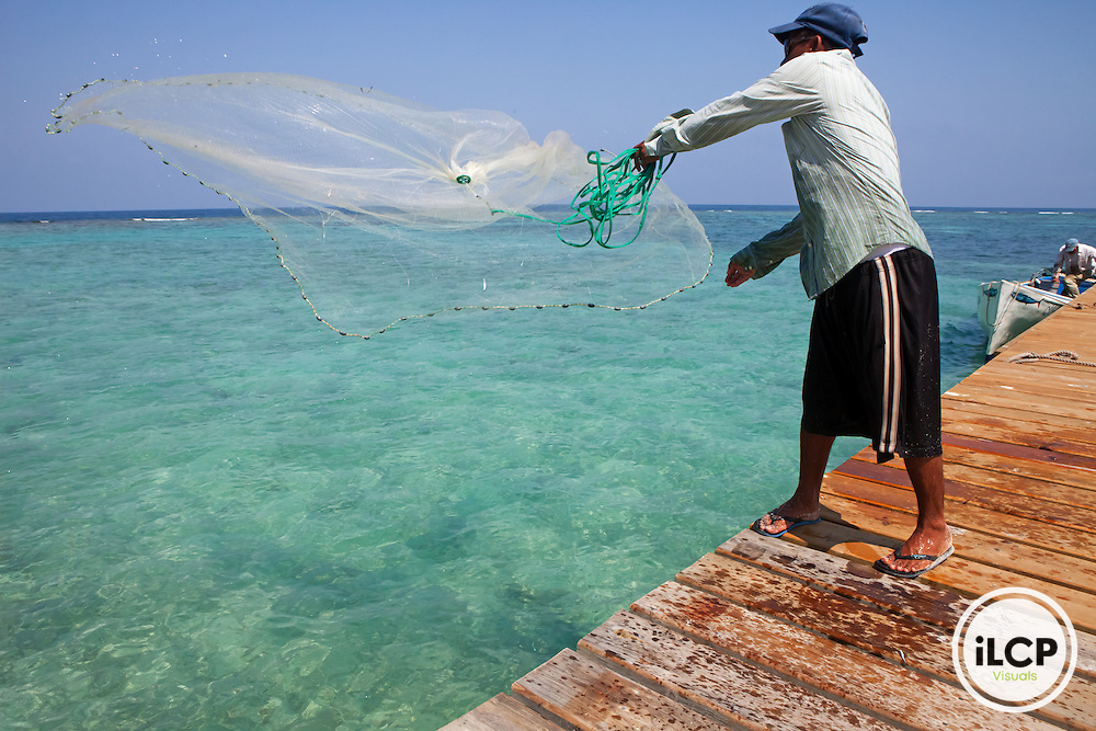 Fisherman catching fry for bait at the dock, Yellowtail Snapper (Ocyurus chrysurus) fishery, Southwest Cay, Utila Cays, Utila Island, Bay Islands, Honduras, April