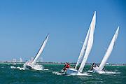 J 24 Class racing during the Bacardi Miami Sailing Week regatta, day 6.