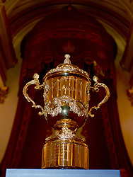 The Webb Ellis trophy on display during a Rugby World Cup reception at Buckingham Palace, London.
