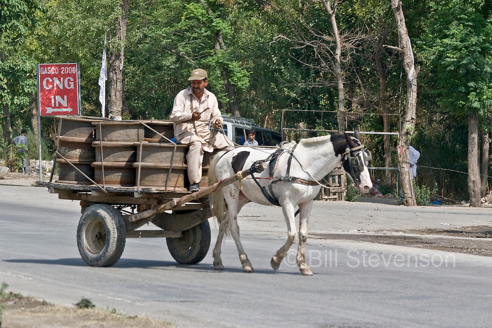 A man driving a horse drawn cart through the streets of Islamabad in Pakistan