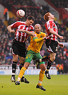 Sheffield - Saturday January 9th, 2009: Stephen Quinn & Chris Morgan of Sheffield United and Antoine Sibierski of Norwich City during the Coca Cola Championship match at Bramall Lane, Sheffield. (Pic by Alex Broadway/Focus Images)