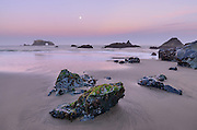 The full moon sets at sunrise from Blind Beach in Sonoma Coast State Park, California.