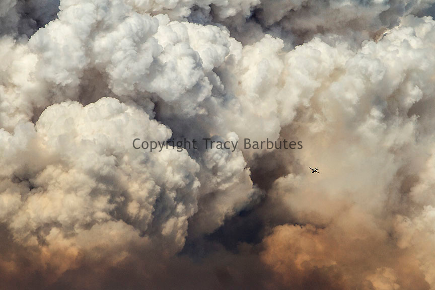 August 2013<br /> An airplane is dwarfed by plumes of smoke rising from California's third largest wildfire - the Rim Fire.