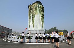 April 27, 2018 - Handan, Handan, China - Handan, CHINA-27th April 2018: A 20-meter-tall sculpture of Chinese cabbage can be seen in Handan, north China's Hebei Province, April 27th, 2018. (Credit Image: © SIPA Asia via ZUMA Wire)
