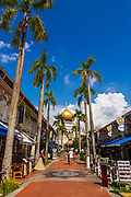 Masjid Sultan mosque and shops on Arab Street in the Malay Heritage District, Singapore, Republic of Singapore