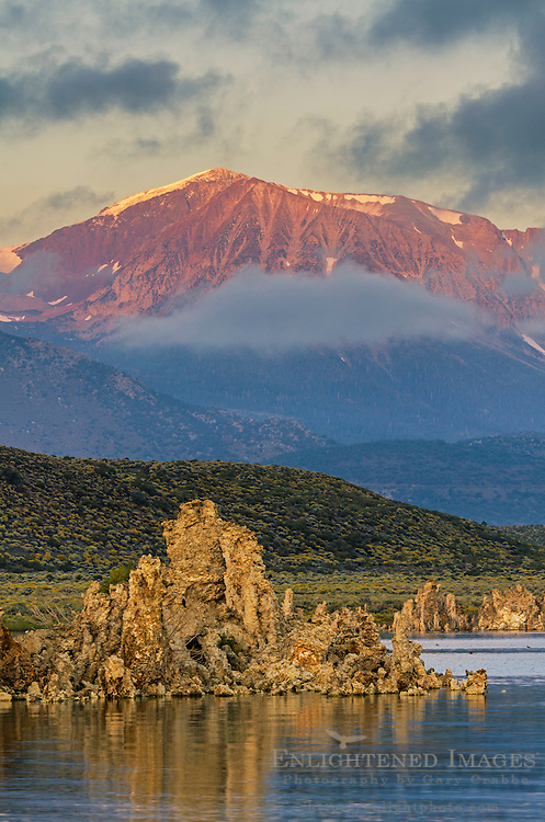 Alpenglow on mountains at sunrise over tufa on the South Shore of Mono Lake, Mono County, Eastern Sierra, California