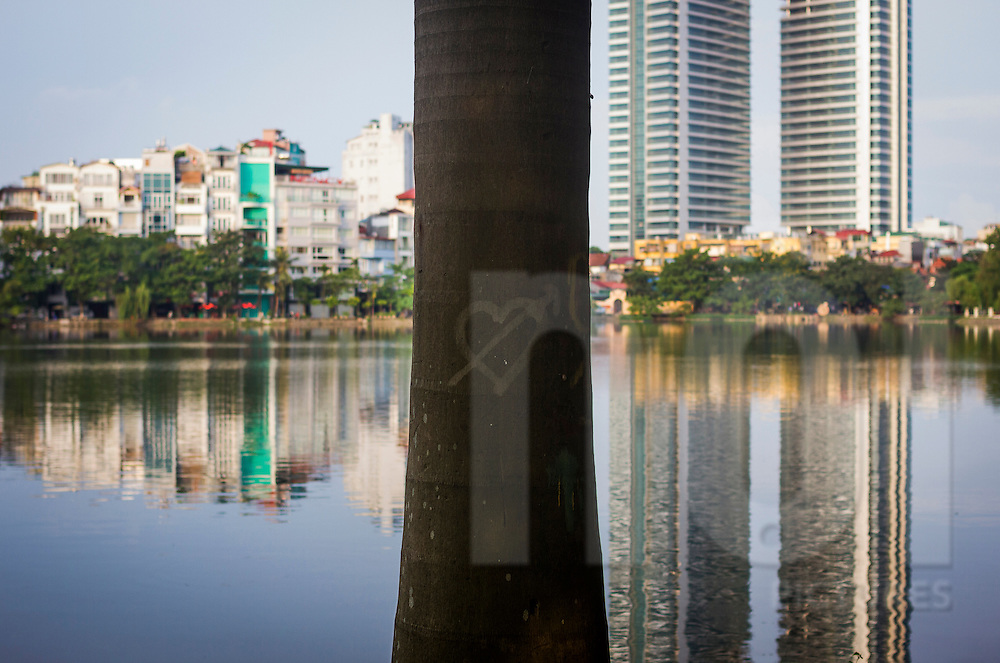 Heart-shaped graffiti on a palm tree by Truc Bach Lake in Hanoi, Vietnam, Asia