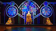 Seattle Art Museum,(SAM) Seattle, Washington, ChimaTEK self-transformation