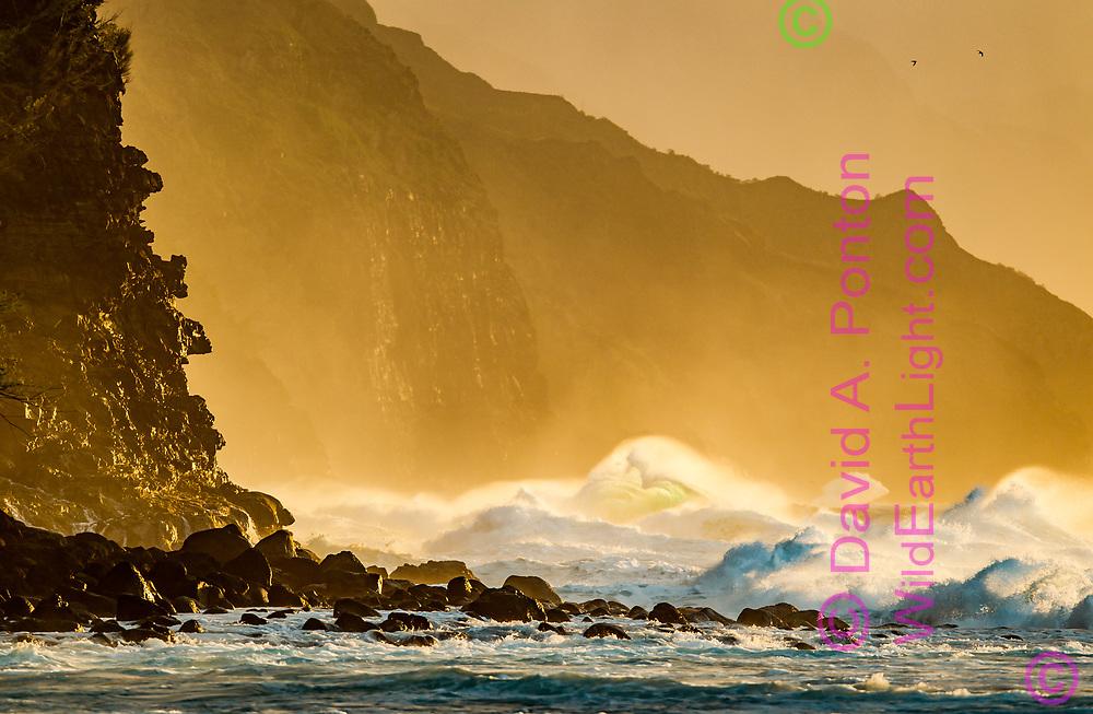 Large unstable ocean waves charge toward cliffs on the rugged Na Pali Coast, with the light of the setting sun, Kauai, Hawaii. © 2010 David A. Ponton