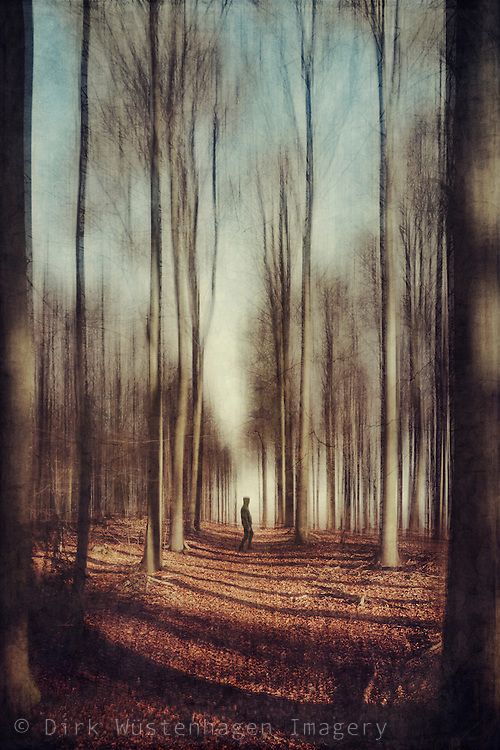 Man on a forest hike - textured and manipulated photograph