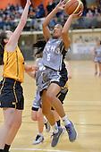 20130829 Basketball Premier Sharp Cup Final - HVHS v Wellington Girls